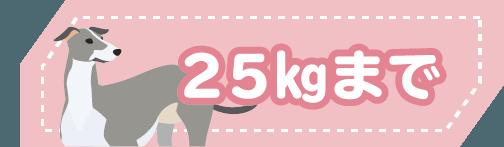 25kgまで