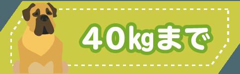 40kgまで