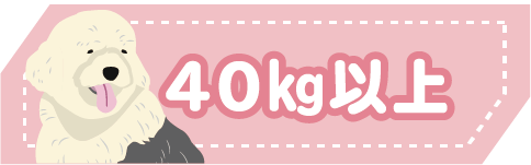 40kg以上